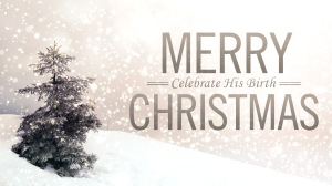 MerryChristmasDEH2Blogpict
